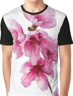 isolated peach blossom Graphic T-Shirt
