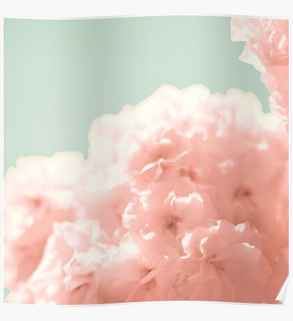 Soft Cherry Blossoms Poster