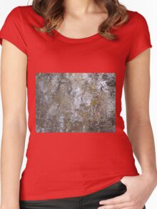 Deep Water Landscape: Autumn Reflections XV Women's Fitted Scoop T-Shirt
