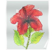 Watercolor red hibiscus 2 Poster