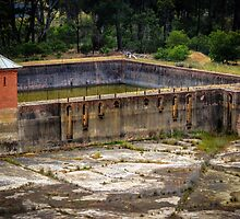 Ye Olde Water reservoir controller by shaynetwright