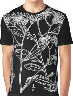Britton And Brown Illustrated flora of the northern states and Canada 0593 Doellingeria infirma BB 1913 1 Graphic T-Shirt