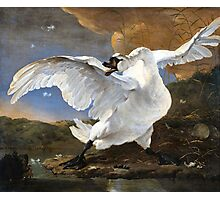 The Threatened Swan by Jan Asselyn 1615-1652 Photographic Print