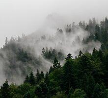Alpine Mist by Bethany Helzer