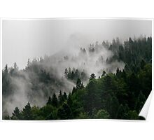 Alpine Mist Poster
