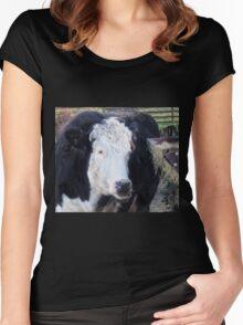 Gentle Giant....... Somerset UK Women's Fitted Scoop T-Shirt