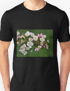 Early Spring Blossoms T-Shirt