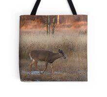 Sunset Wanderer - White-tailed deer Tote Bag