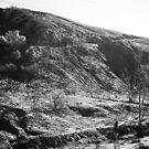 Little Tujunga Canyon #2 by Douglas E.  Welch