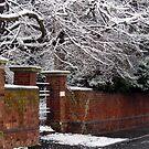Snow go! by Lissywitch