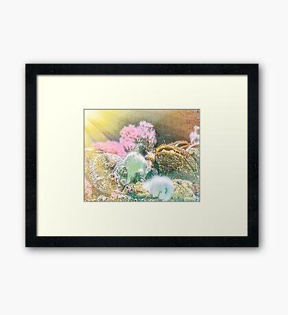 Finders Keepers - Ocean Treasures Framed Print