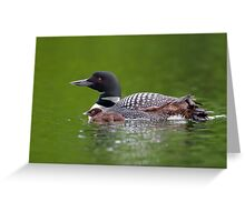 By her side - Common loon Greeting Card