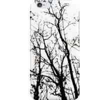 Catch the winter eye iPhone Case/Skin