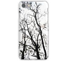 Catch the winter eye iPhone Case/Skin