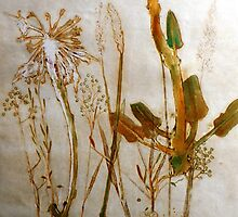 "Mornington Peninsula Grasslands 2 by Belinda ""BillyLee"" NYE (Printmaker)"