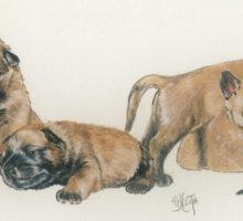 Malinois Puppies Sticker