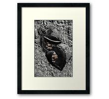 Indigenous Symbolism Framed Print