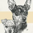 Miniature Pinscher Father & Son by BarbBarcikKeith