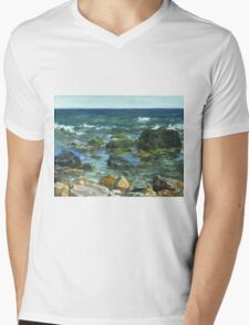 Block Island Mens V-Neck T-Shirt