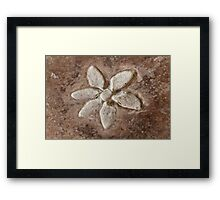 abstract flower background Framed Print