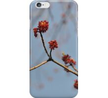 Spring Promise iPhone Case/Skin