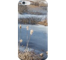 Last Days of Winter iPhone Case/Skin