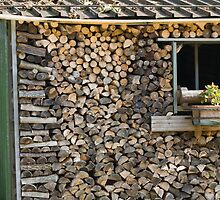 wood in the woodshed by spetenfia