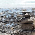 Rock Stack  by surfculture