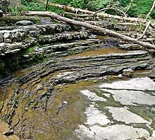 Natural Amphitheater  by Paul Lubaczewski