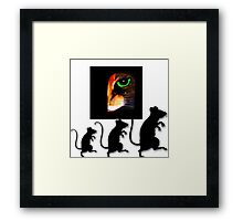 Charming Cat Watching! Framed Print