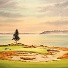 Chambers Bay Golf Course by bill holkham