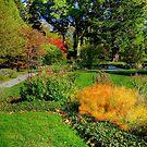 Gardens at Blithewold, Rhode Island by Nancy Richard