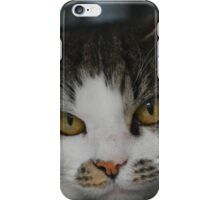 Pebbles the Cat iPhone Case/Skin