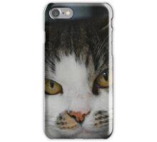 Pebbles the Cat iPhone Case/Skin
