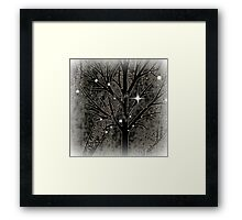 Tree with empty branches in dark cold night  Framed Print