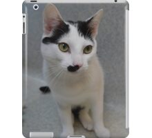 Half - Moustache Max the Cat iPad Case/Skin
