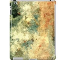 Pure abstract by rafi talby  iPad Case/Skin