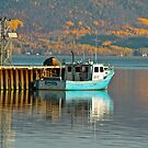 Fishing Boat, Cambellton, New Brunswick by Vickie Emms