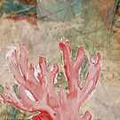 Red Coral and Shell by Sarah Butcher