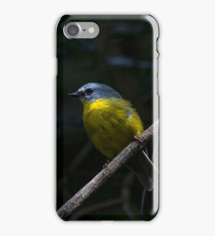 Eastern Yellow Robin iPhone Case/Skin