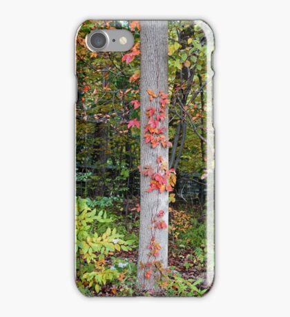 Irresistible Desire iPhone Case/Skin