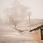 California Fog by LudaNayvelt