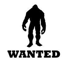 Bigfoot Wanted by TheBestStore