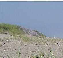 Bluff on Beach - Hamptons seaside by HamptonsNY