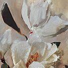 Magnolia Grandiflora by Sarah Butcher