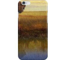 savanna reflection african lion iPhone Case/Skin