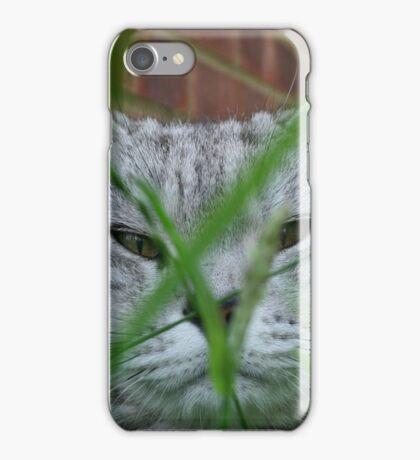 Cat in grass iPhone Case/Skin
