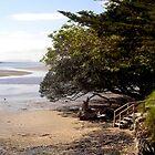 en Route To Ninety Mile Beach by lezvee