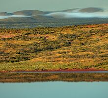 Lake Gairdner National Park by Kevin McGennan