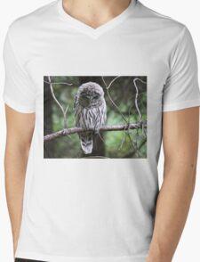 Light Phase Barred Owl Mens V-Neck T-Shirt